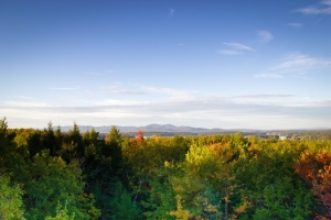 mountains-trees-fall-foliage-medium