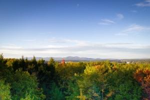 mountains-trees-fall-foliage-medium
